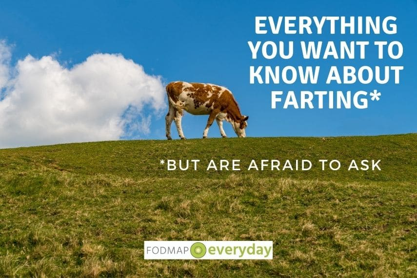 Feature Image for Everything You Want To Know About Farting - A cow standing on a hill with a cloud in the sky behind it that looks like gas coming out of the cow.