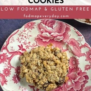 Low FODMAP Cinnamon Apple Breakfast Cookies