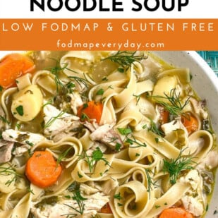 Low FODMAP Instant Pot Chicken Noodle Soup - FODMAP Everyday