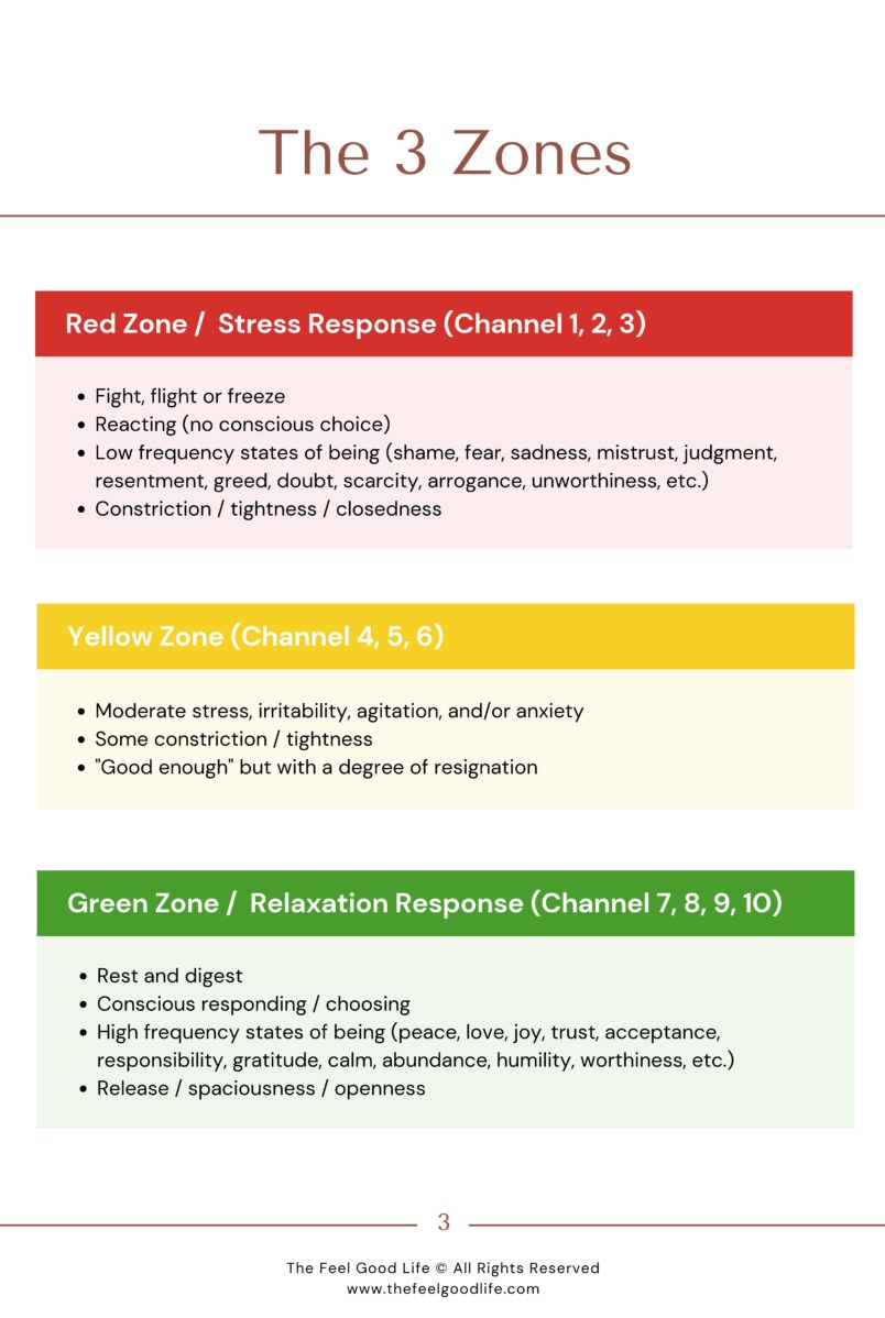 Feel Good Methodology Scale Description