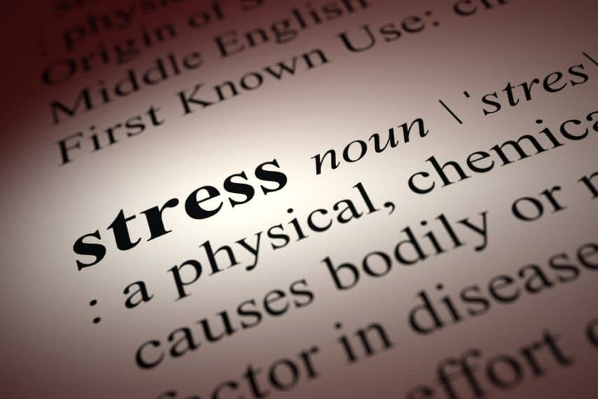 close up of the word stress in the dictionary