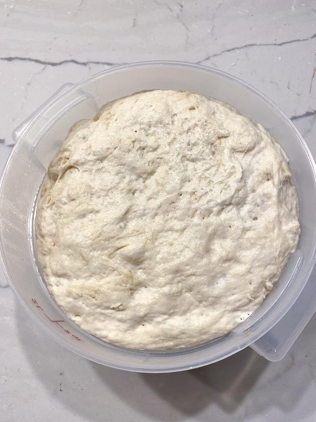 risen sourdough pizza doughmin container