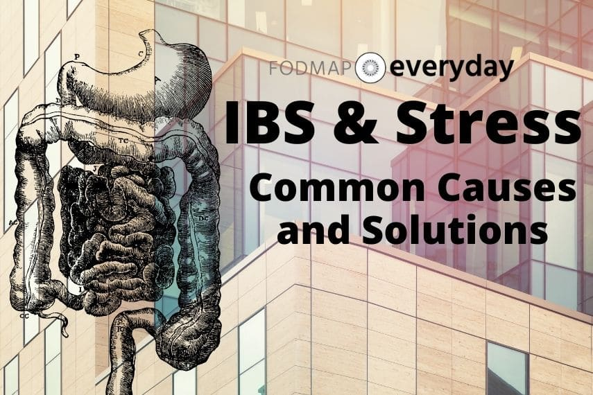 The feature image for the article IBS and Stress