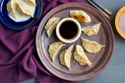 low FODMAP Pork Dumplings on brown plate with dipping sauce in white bowl 2