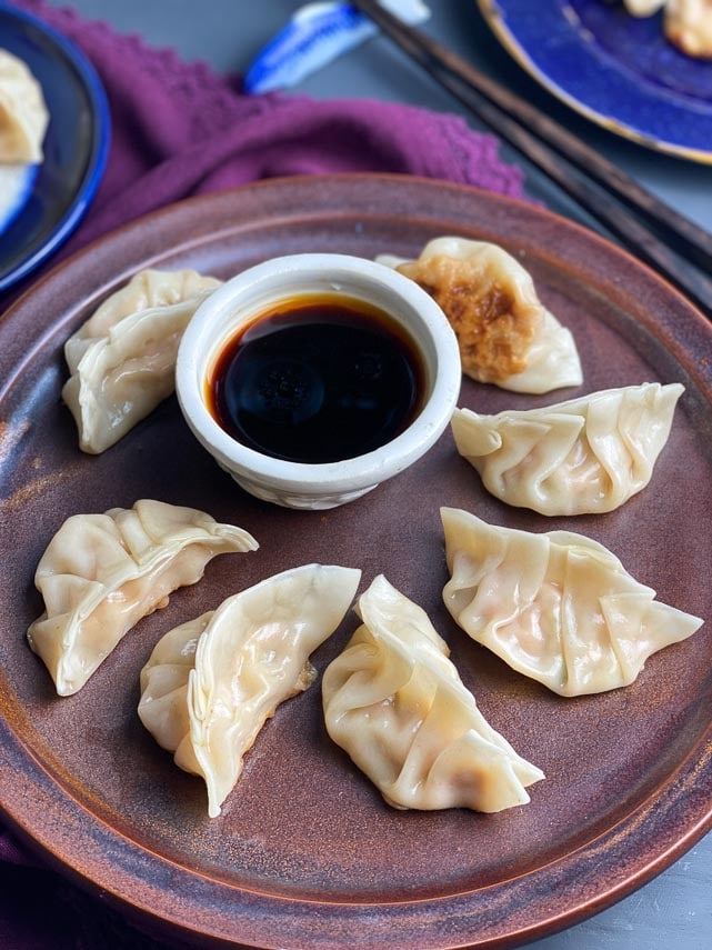 low FODMAP Pork Dumplings on brown plate with dipping sauce in white bowl